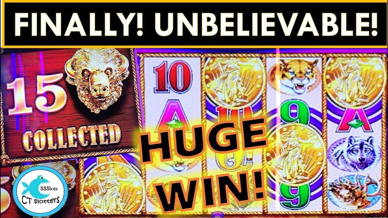 IT FINALLY HAPPENED! ALL 15 HEADS ON SUPER FREE GAMES! BUFFALO GOLD SLOT MACHINE, TALL FORTUNES! 7